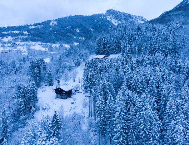 chalet-snow-peace-1by1